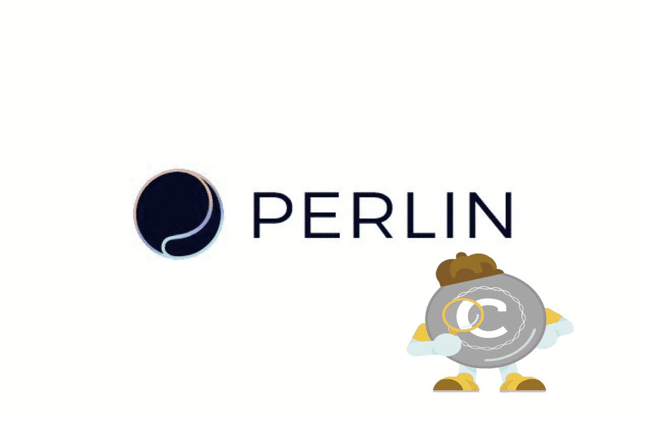 【情報量日本一位】Perlin(パーリン)を徹底調査!!!!!!